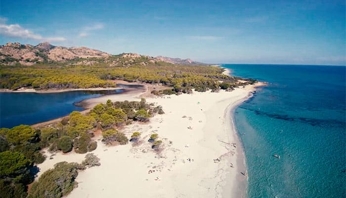 Excursions to Bidderosa Oasis - Sardinia